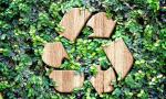 Recycle Smartly